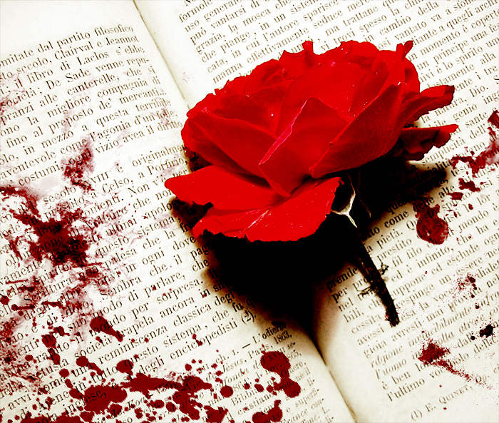 bleeding-rose-on-a-book